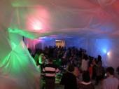 Roche, Matthew - Million Brazilians Performance Installation